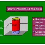 Personal Trainer Bologna carboidrati del corpo