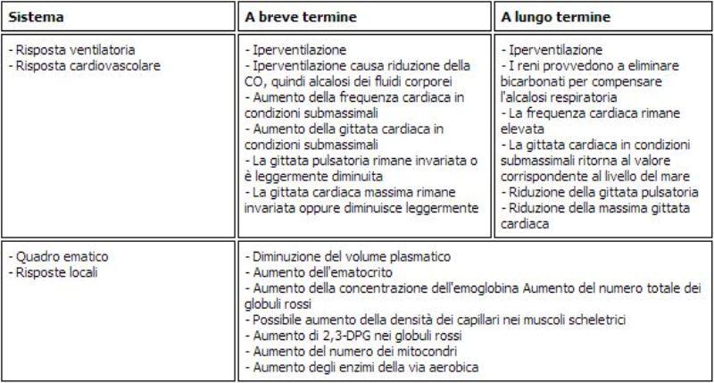 Variazioni fisiologiche all'allenamento in quota - Personal Trainer Bologna